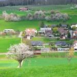 Auswandern in die Schweiz – hilfreiche Tipps für die Auswanderung