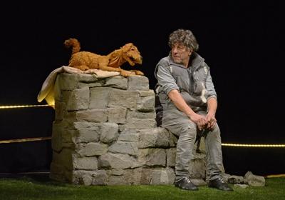 theater-fur-wachsendes-wie-erwachsenes-publikum-mein-name-ist-schaf